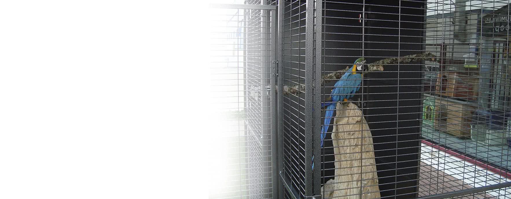 Découvrez nos cages et accessoires pour tous types d'oiseaux
